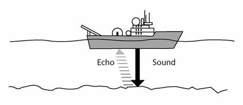 Hello, echo, sound, diagram, sonar